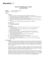 s manager technical resume