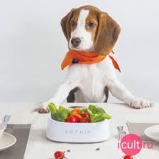 <b>Миска</b>-<b>весы PetKit Smart Smart</b> Weighing Bowl 450 мл. White белая