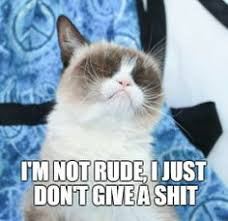 Grumpy Cat on Pinterest | Grumpy Cat Meme, Hoodie and Grumpy Cat ... via Relatably.com