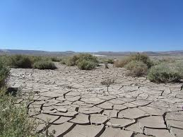 """Résultat de recherche d'images pour """"désert"""""""