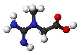 Výsledek obrázku pro kreatin monohydrát
