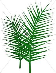 Image result for clip art palm