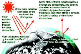green house effect essay ap world history essay rubric compare mega essay