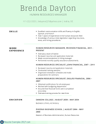 remarkable resume examples skills resume examples 2017 best resume examples skills professional example of skills for resume
