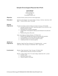 resume layout sample sample resume layout template template format of chronological resume