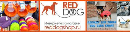 Интернет-зоомагазин REDDOGSHOP.RU | ВКонтакте