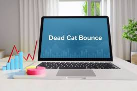 <b>Dead Cat</b> Bounce - Overview, How It Works, Examples