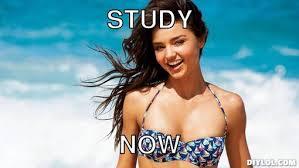 Motivation Meme Generator - DIY LOL via Relatably.com