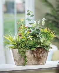 order realistic artificial succulent plants for home and office decor at petals artificial plants for office decor