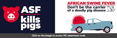 African <b>swine</b> fever: OIE - World Organisation for Animal Health