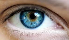 Nuevo movimiento del ojo