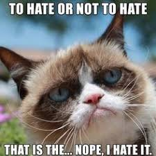 Grumpy cat❤❤❤ on Pinterest | Funny Workout Quotes, Steve Perry ... via Relatably.com