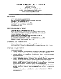 sample speech writer resume