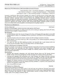 resume example account executive  jpgaccount executive resume example