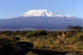 Resultado de imagem para As Neves de Kilimanjaro