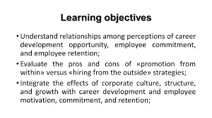 reinventing organizational careers university of jyvaskyla 2 learning objectives understand relationships among perceptions of career development