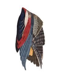 <b>Feathers</b> Freeform Big | cc-tapis