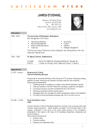 sample cv template doc example of tabular templat format word it