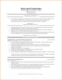 st time job resume samples cipanewsletter cover letter first time job resume examples resume examples for