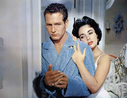 the contradictory power of cat on a hot tin roof village voice hot tin roof expand