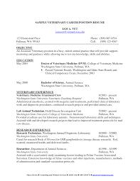 resume job objective examples career objective examples for resume job objective examples cover letter objective sample cover letter template for interpreter resume medical objective