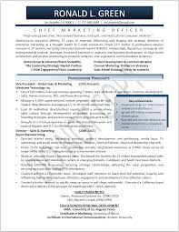 Executive Resume Samples   Professional Resume Samples   Resumes       executive resume samples