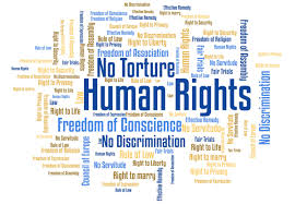 human rights essay introduction humans rights essay human rights essays essays on human rights