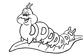 Small Picture List of beautiful caterpillar and butterfly coloring pages