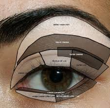 eye diagram let 39 s start with the basics shall we if you have no idea eyes make up step by applying eyeshadow