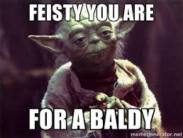 Feisty you are For a baldy - Yoda | Meme Generator via Relatably.com