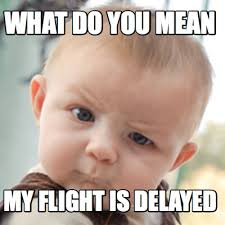 Meme Creator - WHAT DO YOU MEAN MY FLIGHT IS DELAYED Meme ... via Relatably.com