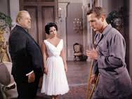 cat on a hot tin roof        articles   tcm comteaser cat on a hot tin roof