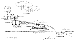 the hydrological cycle and itsdiagrammatic representation of the hydrological cycle