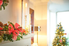 <b>Popular Flowers</b> For <b>Christmas</b> and Their Meanings - Interflora