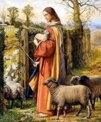 Kết quả hình ảnh cho chúa chiên lành