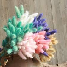 <b>30Pcs</b>/<b>lot Natural Rabbit Tail</b> Grass Dried Flower Decoration Festive ...
