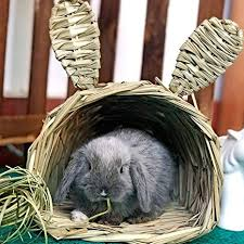 Small Animals Grass House Volwco Ear Design <b>Hand</b>-<b>Woven</b> Straw ...