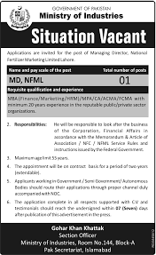 jang jobs managing director jobs in ministry of industries islamabad
