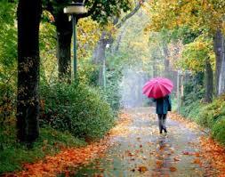 نتیجه تصویری برای باران