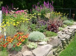Small Picture inspiring perennial garden design pictures design with shade