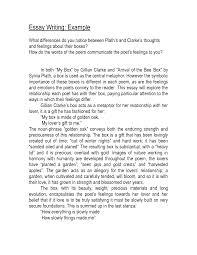 basic essay format proper essay format example mla format citation    basic essay format proper essay format example mla format citation how to write a ged essay how to write a great ged essay how to write a basic essay how to