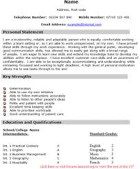 Personal Statement For Nursing Job Application Examples  good     Sales assistant CV template