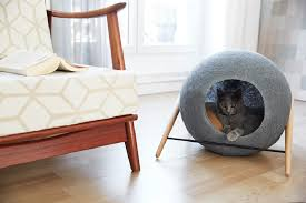 refined and elegant furniture for cats cat modern furniture