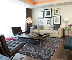 contemporary living room dark floor image credit niki papadopoulos shag area rugs living room modern with