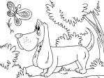 Раскраска собачки детская