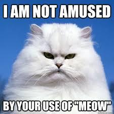 Right Meow memes | quickmeme via Relatably.com
