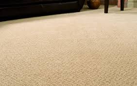 carpet cleaning in essexville
