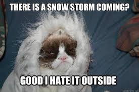 Cold Grumpy Cat memes | quickmeme via Relatably.com