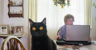 Image result for retirement phone and computer work