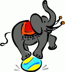 """Résultat de recherche d'images pour """"gif éléphant pet"""""""